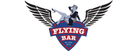 G-FlyingBar